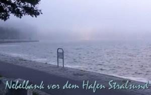So entsteht Nebel und Seenebel